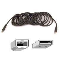 Belkin Pro Series USB 2.0 Cable A/B - 10' (F3U133-10)