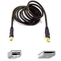 Belkin Gold Series USB 2.0 Cable A/B - 6' (F3U133-06-GLD)