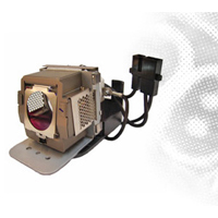BenQ Projector Lamp for MP510 (5J.01201.001)