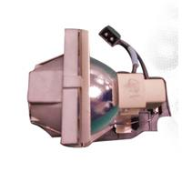 "BenQ Projector Lamp ""1"" for SP920 (9E.0C101.001)"