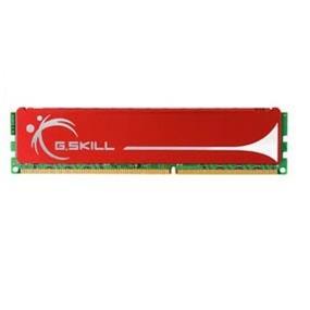G.SKILL NQ Series DDR2 800MHz (PC-6400) 1GB (F2-6400CL5S-1GBNQ)