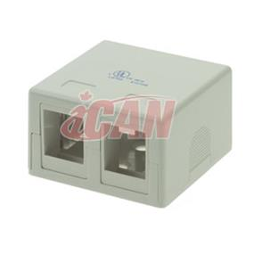 iCAN 2 Port Surface Mount Box CAT4/5/6 (RJ45 SMBOX-2WHI)