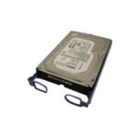 "Lenovo - Hard Drive - 500 GB - 3.5"" - SATA-300 - 7200 rpm - for ThinkServer TS130; TS430 (67Y2613)"
