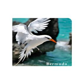 iCAN View Mouse Pad PVC top EVA bottom(Bermuda Longtail)