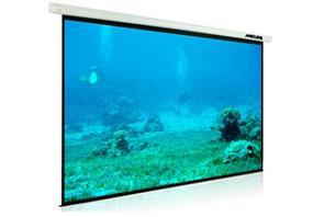 """Mozaiq ES120W Electric Projector Screen 120"""""""