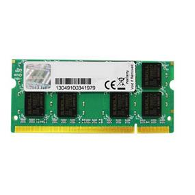 G.SKILL Standard Series 2GB  DDR2 667MHz CL4 SO-DIMM Memory (F2-5300CL4D-2GBSA)