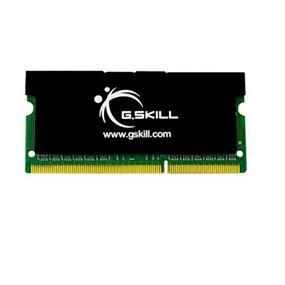 G.SKILL SK Series 4GB (2GBx2) DDR2 667MHz CL5 SO-DIMM Memory (F2-5300CL5D-4GBSK)
