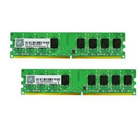 G.SKILL Value Series 2GB(2x1GB)  DDR2 667MHz CL5 Dual Channel Kit (F2-5400PHU2-2GBNT)