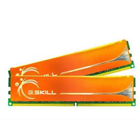 G.SKILL Performance Series 8GB (4GBx2)  DDR2 800MHz CL6 Dual Channel Kit (F2-6400CL6D-8GBMQ)