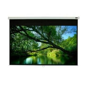"""EluneVision Triton Manual Projection Screen - 100"""" - 4:3 - Ceiling Mount"""