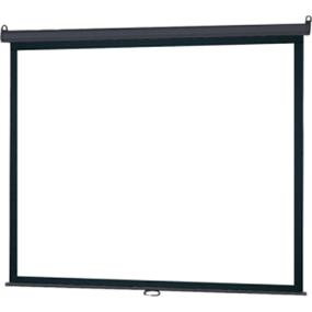 "InFocus 100"" (Diagonal) Manual Pull Down Projector Screen"