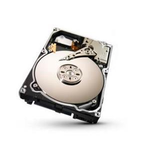 Seagate 1TB SAS 6Gb/s SED HDD (ST91000641SS)