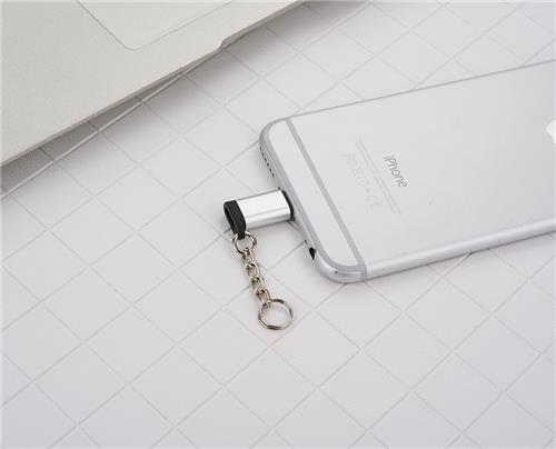 FLITOP Micro USB to Lightning Adapter with Key Chain, Silver (V8_IP)
