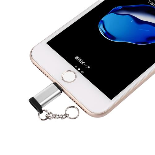 FLITOP Type C to Lightning Adapter with Key Chain, Silver (Type-C_IP)