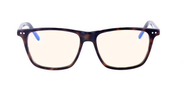 NORTH PLUS Anti-Blue Light Glasses C04 - Tortoise Shell