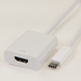 iCAN Premium USB 3.1 Type C Male to UltraHD HDMI 2.0 4K Female adapter (ADP USB3C-HDF)